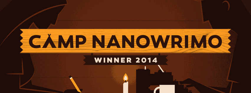 CampNano2014Winner1