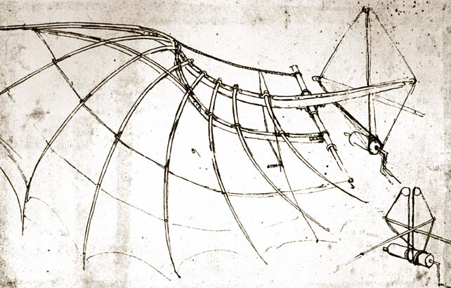 Leonardo Da Vinci - Bird Wing with Mechanical Parts