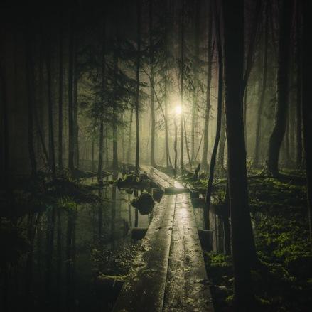 Mikko-Lagerstedt--8--Pathway