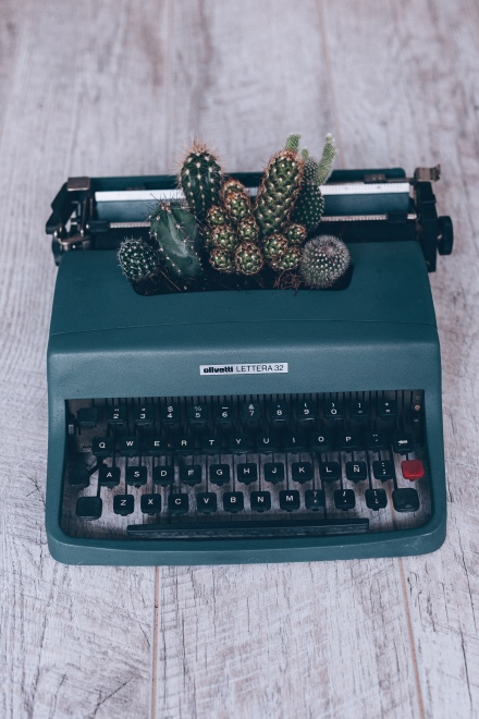 Image of cactus and typewriter from Florencia Viadana on Unsplash